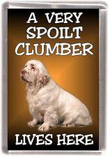 "Clumber Spaniel Fridge Magnet ""A VERY SPOILT .... LIVES HERE"" by Starprint"