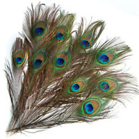 10Pcs Peacock Eye Tail Feathers for Millinery/Hat/Mask Making 9-13 Inch