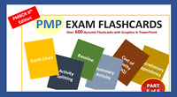 600 PMP Exam Flashcards Dynamic Colorful in Plain English + Bonus; PMI 6 Edition