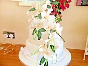 HAND MADE SUGAR ORCHIDS TRAILING TWO SPRAYS IN  IVORY,   New