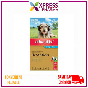 Advantix Flea and Tick treatment for medium dogs 4-10kg