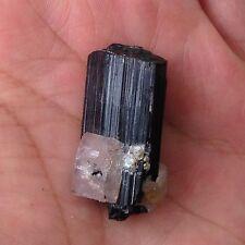 Black Tourmaline Crystal With Apatite