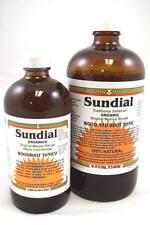 Sundial Jamaican Wood & Root Tonic 16 oz