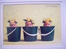 Anne Geddes Baby in Pots Green Matted Art Nursery Print
