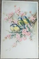 Rare Vintage Bird Postcard - Pink Flowers Multicolor Birds Unposted-C.1930-1940.