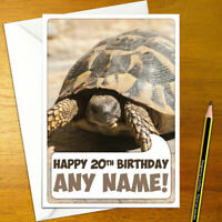 TORTOISE Personalised Birthday Card - animal animals personalized happy slow