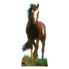 MUSTANG HORSE Chestnut Lifesize CARDBOARD CUTOUT Standee Standup Poster Prop