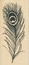 Peacock Feather N030  Stampendous Rubber Stamp  ~ w/m Free Shipping NE