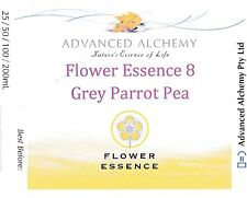 Flower Essence #8 Decision Making - Advanced Alchemy 25ml Grey Parrot Pea