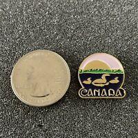 Canada Ducks in Pond Sunset Small Travel Souvenir Pin Pinback #38595