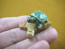 (Y-TUR-LA-103) baby GREEN serpentine Turtle FIGURINE on soapstone branch carving