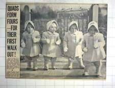 1950 The Cute Good Quads Out For Walk Westerleigh Gloucestershire