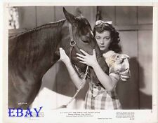 Gail Russell w/horse VINTAGE Photo Great Dan Patch