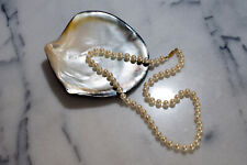 Natural Genuine Oyster Shell Seashell for Jewelry Display Tray Dish Plate