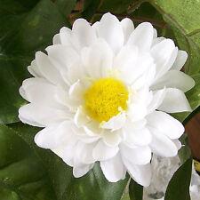 """12 White Daisy Artificial Silk Flower 3"""" Head Hair Clip Craft"""
