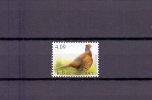 BELGIUM 2010 pheasant buzin bird MNH** 4046