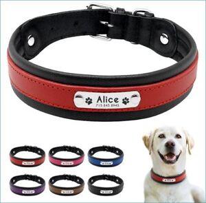 ID Echtleder Halsband mit Edelstahlplatte + Gravur nach Wunsch Hunde in 6 Farben