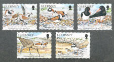 Guernsey Nature Conservation- Birds mnh 1991 set