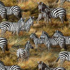 Fat Quarter Animal Adventure Zebra In Savannah Sewing Cotton Quilting Fabric