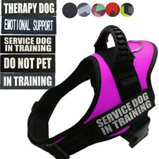Service Dog in Training Girl Dog Harness Vest W/ Reflective Patches Emotional