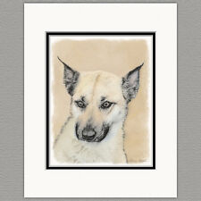 Chinook Dog Pointed Ears Original Art Print 8x10 Matted to 11x14