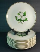"Set of 11 American Limoges China Glamour Trillium 22K 10"" Dinner Plates G-410"
