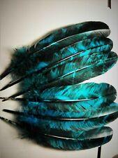 TURKEY FEATHERS                      powwow smudge fan  regalia  [ BLACK & BLUE]