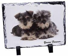 AD-S67uSL Schnauzer Dog-Love Photo Slate Christmas Gift Ornament