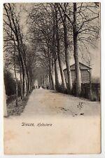 DIEUZE DUSS Moselle CPA 57 chemin bordé d'arbres Halbuterie