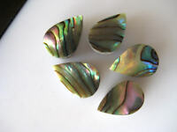10 Pcs Natural Abalone Shell Pear Shaped Cabochons Mother of Pearl 8x11mm BB152