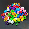100 Pcs 8mm 1-100 Numbered Poultry Leg Bands Bird Pigeon Duck Rings Clip Parrot