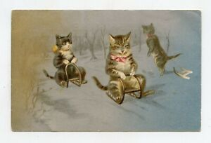 Helena Maguire Without Signature. Cats Humanized IN Sledges