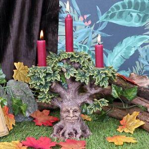 Nemesis Now  FOREST FLAME  Tree Spirit Candelabra  Pagan Witchcraft Gothic