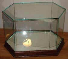 "Glass & Wood Display Case Table Top Octagonal  (13.75"" x 8"")"