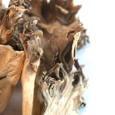 Maitake Mushrooms (Hen of the Woods), Dried | Bulk | Spice Jungle