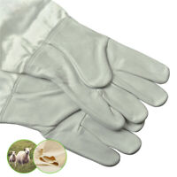 Ventilated Superior Beekeeping Bee Gloves - Soft Gold Hide - All Sizes