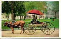 "C.1907 BLACK AMERICANA POSTCARD ""A BOVINEMOBILE"" OXEN CART #11517"