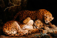 "high quality oil painting handpainted on canvas ""Two Leopards"""