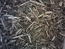 Dried Herbs: SCULLCAP - Scutellaria lateriflora Organic   25g