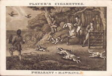 players cigarettes card - ( old sporting prints ) pheasant hawking  !