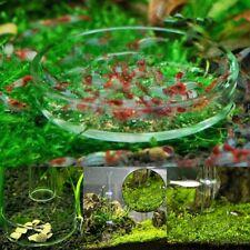 Aquarium Fish Tank Glass Shrimp Feeding Food Dish Bowl Feeder Tray Container
