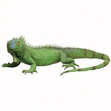 Realistic Life Size Green Iguana Lizard Reptile Latex School Halloween Prop Toy