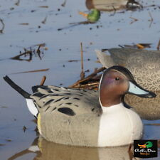 Avery Greenhead Gear Ghg Oversize Pintail Duck Decoys Weighted Keels 6