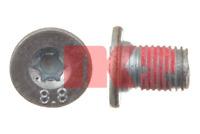 Schraube Bremsscheibe - NK 89011661