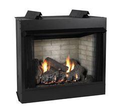 Deluxe 36 VF L-Face Firebox, CO Logset & IP Slope Glaze Burner - NG