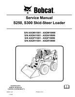 Bobcat S250 S300 Skid Steer Loader 2009 Edition Service Repair Manual 6986680