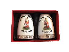 More details for welsh ceramics elgate collection salt & pepper pots
