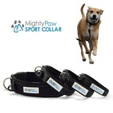 Mighty Paw Neoprene Padded Running Dog Collar, Premium Quality Sports Collar