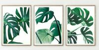 Monstera Leaves Print Set Tropical Palm Leaf Wall Art New Home Gift room Bedroom