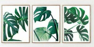 Monstera Leaves Print Set Tropical Palm Leaf Wall Art New Home Gift room Bedroom